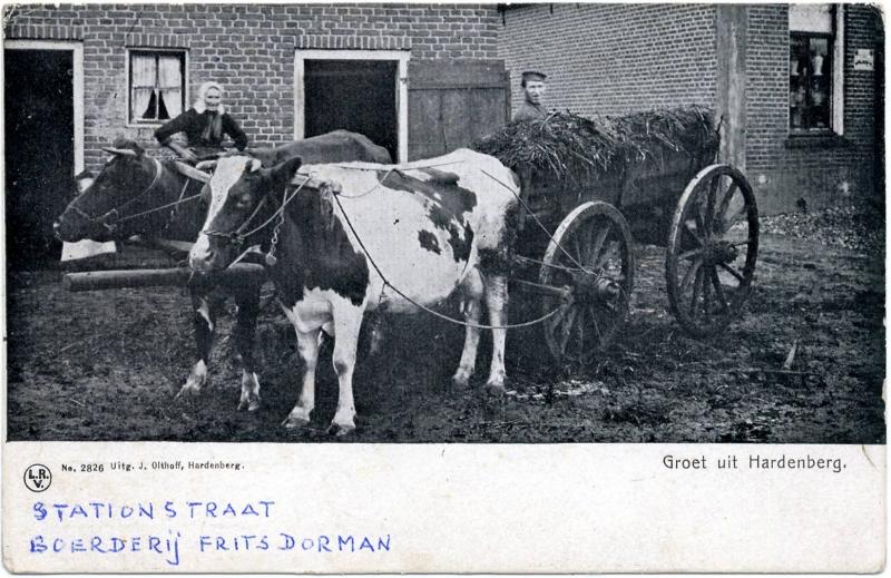 0612_boerderij_Frits_Dorman